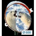 Зеркало дорожное для улицы с козырьком  D=600